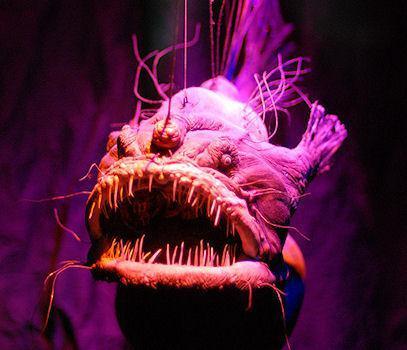 Spooky Deep-Sea Creatures