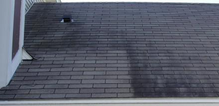 Black roof stains cleaned