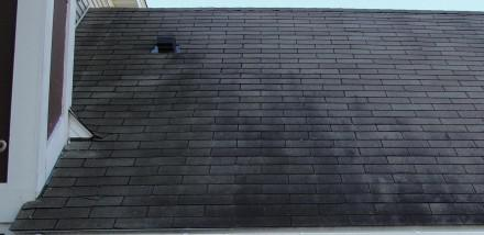 Black roof stains