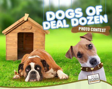 Win P10,000 in Dogs of Deal Dozen Photo Contest!