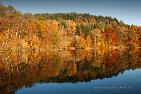 Landscape photo -  autumnal trees reflected in Loch Tummel, Scotland