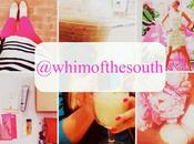 {Whim South Mini Moments}