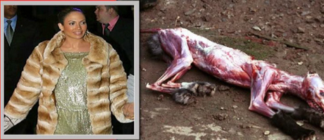 your fur coat