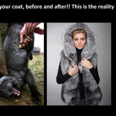 before and after fur