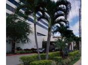 Sheraton Miami Airport Hotel Review