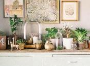 Bring Green (and Clean Air) with Houseplants!