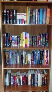 Bookworm's Bookshelves