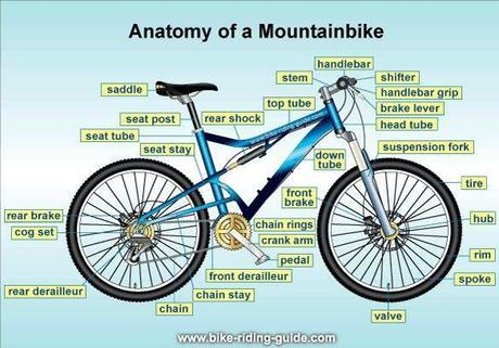 Just Sharing Anatomy Of Mountain Bike Parts Components Paperblog