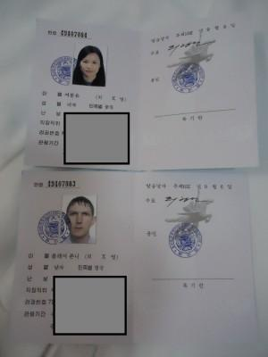 visa for north korea