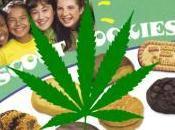 Cookie Cartel