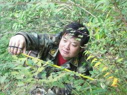 Gauging what it takes to heal a disaster-ravaged forest: Case study in China