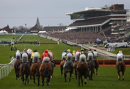 The Cheltenham Festival- A British Institution