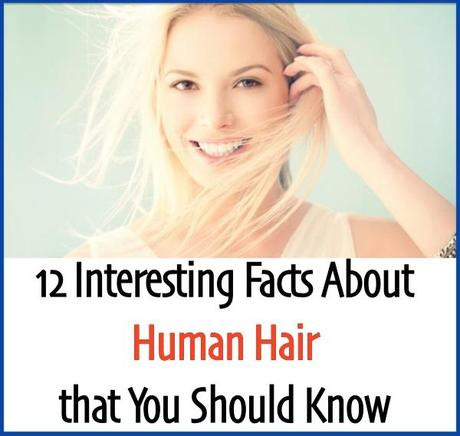 12 interesting facts about human hair 12 interesting facts about human