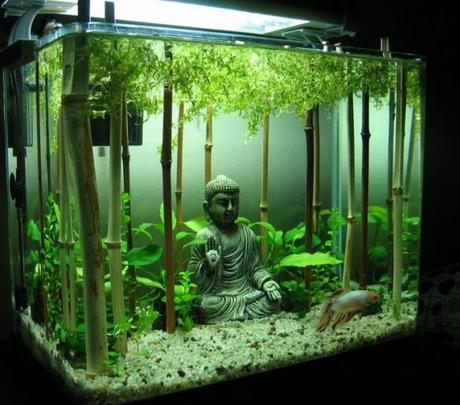 The worlds top 10 best themed fish tanks l ivymrn