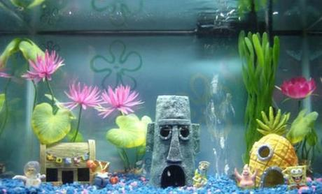 The world s top 10 best themed fish tanks paperblog for Coolest fish in the world