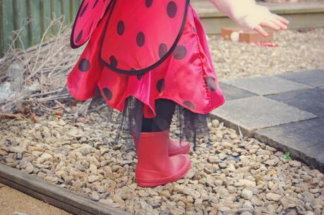 Jokers Masquerade Review: Ladybird Costume!