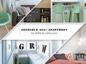 Adorable 45sqm Apartment