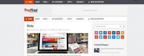 premium-WP-theme-computergeekblog5