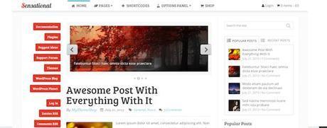 premium-WP-theme-computergeekblog6