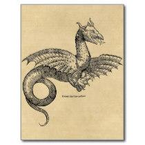 Dragon Parchment postcard