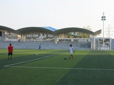 local football north korea