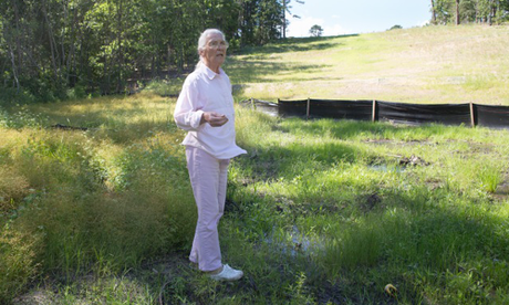 Eleanor Fairchild on the easement where TransCanada installed the Keystone XL pipeline on her land. Photo Credit:  Julie Dermansky