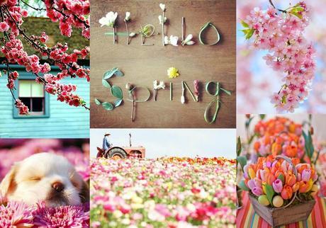 http://m5.paperblog.com/i/83/830382/sunday-postcards-spring-L-sgCFRG.jpeg