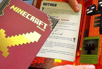 Minecraft Combat Handbook Review - Paperblog