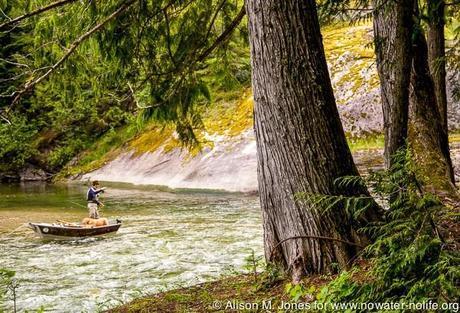 Canada: British Columbia, near Nelson, Salmo River
