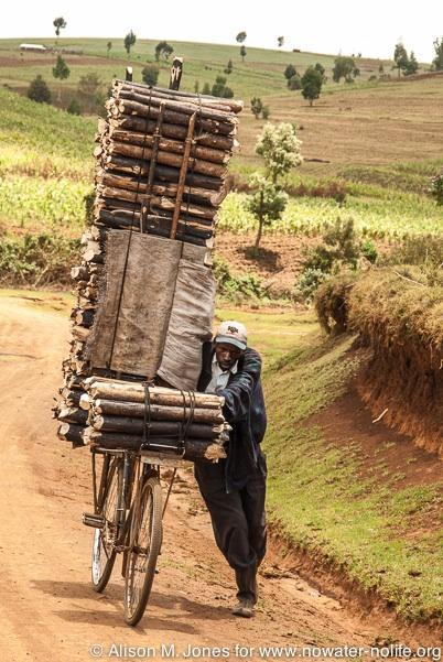 Kenya: No Water No Life Mara River Expedition, local man with wood cut from Mau Forest on his bike
