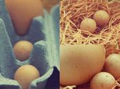 Fairy Eggs
