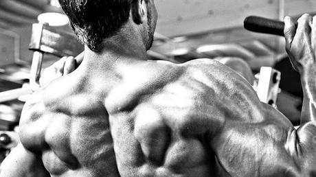 Simple workouts to have a great back