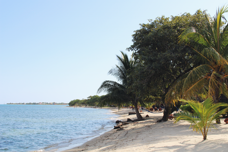 Belize Diary