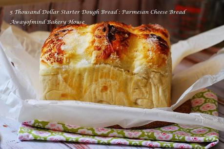 Five Thousand Dollar Starter Dough Bread: Parmesan Cheese and Cinnamon Rolls (五千块老式酵头面包)