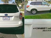 Horsing Around 2014 Subaru Forester #SubaruForester