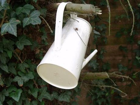 herb garden watering can
