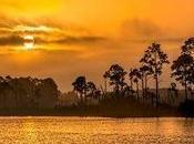 "River, ""Real Florida"""