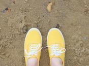 Let's Beach-each, Away
