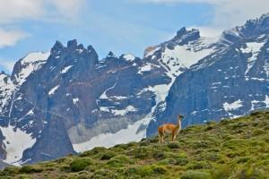 Chile from Green Global Travel