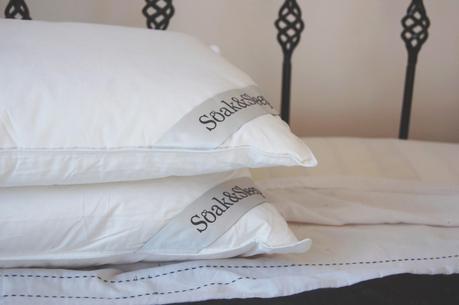 review soak sleep pillows paperblog. Black Bedroom Furniture Sets. Home Design Ideas