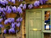 Your Front Door