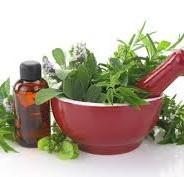Natural Herbs for Glowing And Beautiful Skin