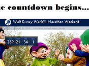 2015 Walt Disney World Marathon Weekend Registration!