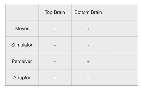 Top Brain, Bottom Brain  - a user's manual from Kosslyn and Miller