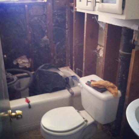 bathroomdemolition