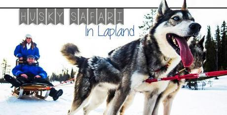 VIDEO: Husky Safari in Lapland
