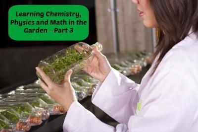 Learning Chemistry, Physics and Math in the Garden – Part 3 | LazyHippieMama.com