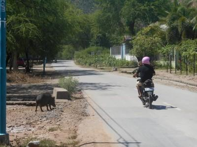 The road back from the Jesus Statue - a motorbike and a warthog!