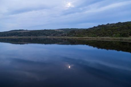 moonlight over aire river cape otway