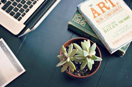 Succulent-brown-pot-planter-trader-joes-flowers-plants-indoor-garden-gardening-house-soil-desk-table-work-cute-books-decor-arrangement-starfish-beach-laptop